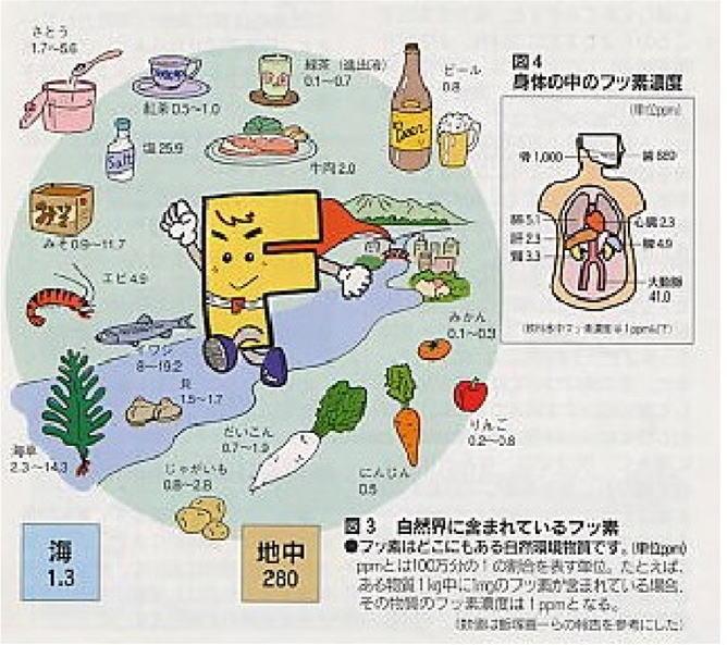 フッ素 - Fluorine - JapaneseClass.jp